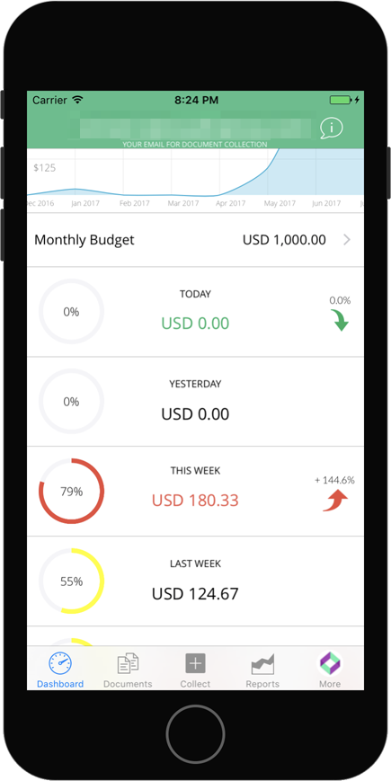 Budget 101 from the Veryfi Dashboard