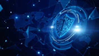 Veryfi Shield for companies that care about data privacy
